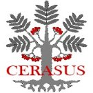 Cerasus Poetry's picture
